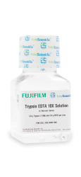 Trypsin EDTA 10X Solution - Liquid