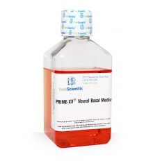 PRIME-XV Neural Basal Medium