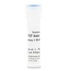 Recombinant Human FGF-basic 154 ACF